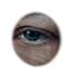 Das nennt man dann wohl ein Bio-Eye